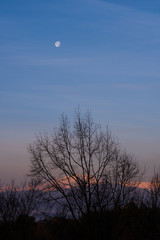 Beautiful sunrise with moon on the italian mountains in the Varese region.