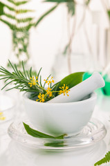 White mortar and pestle with herbs.