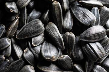 texture of sunflower seeds
