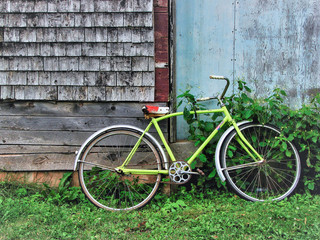 Aluminium Prints Bicycle old green bicycle