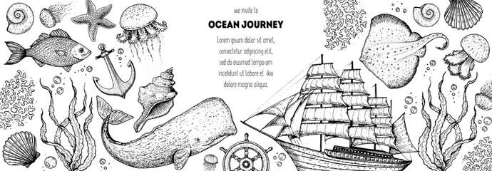 Underwater world hand drawn collection. Sketch illustration. Seaweed, coral, seashells, starfish, jellyfish, boat, sperm whale, stingray illustration. Undersea world collection. Nautical set