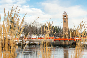 Tall reeds along the Spokane River are in focus with the river, bridge and clock tower slightly blurred behind in Riverfront Park during winter.
