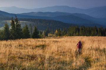 Hiker is walking along the trail through tall grass in the mountains. View on the wooded hills and hazy peaks in the distance at sunset. Concept traveling and adventuring.