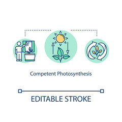 Competent photosynthesis concept icon. Light exposure. Plant lighting need. Houseplant care. Sufficient sunlight idea thin line illustration. Vector isolated outline RGB color drawing. Editable stroke