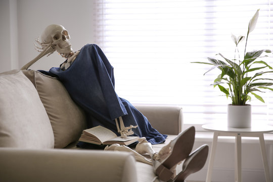 Human skeleton with book on sofa indoors