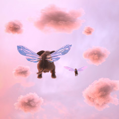 elephant and dog are flying in the clouds