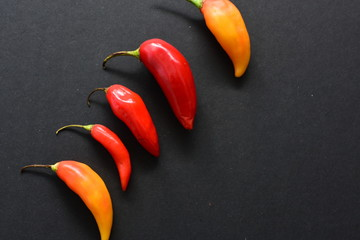 In de dag Hot chili peppers Aji variety sweet pepper in different colors
