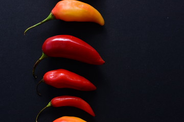 Canvas Prints Hot chili peppers Aji variety sweet pepper in different colors