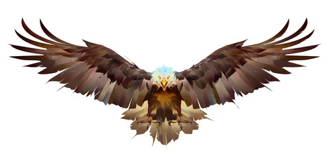painted bright eagle on a white background flaps its wings Wall mural
