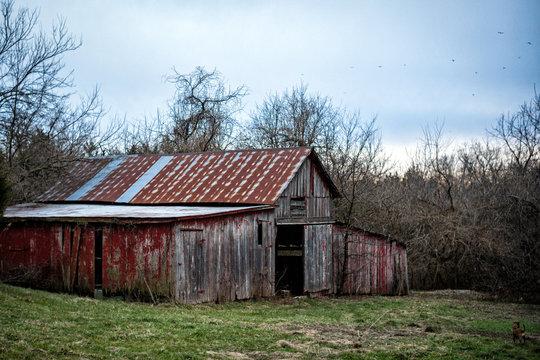 Old dilapidated condemned barn in field on farm in midwest middle america with corn and meth