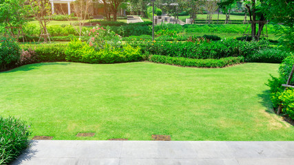 Tuinposter Lime groen Fresh green grass smooth lawn as a carpet with curve form of bush, trees on the background, good maintenance lanscapes in a garden under cloudy sky and morning sunlight