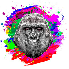 Colorful artistic monkey with colorful paint splatters on white background.
