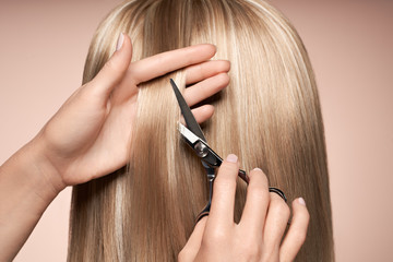 Hairdresser cuts long blonde hair with scissors. Hair salon, hairstylist. Care and beauty hair...