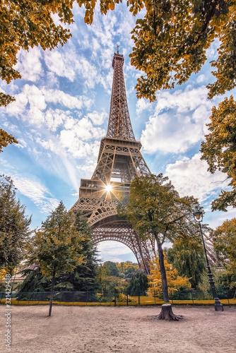 Fototapete Eiffel tower in Paris viewed from the Champ-de-Mars park