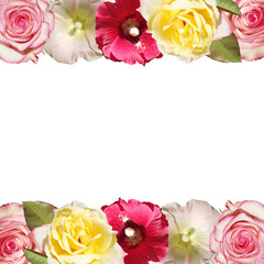 Fototapete - Beautiful floral pattern of malvas and roses. Isolated