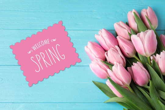 Beautiful pink tulips and greeting card on blue wooden background, top view. Hello spring