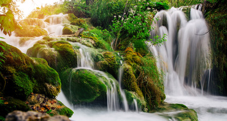 Printed roller blinds Forest river Plitvice lakes, Croatia. Beautiful place visited by thousands of tourists every year.