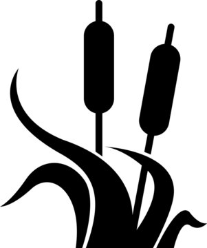 Wetlands icon, vector illustration