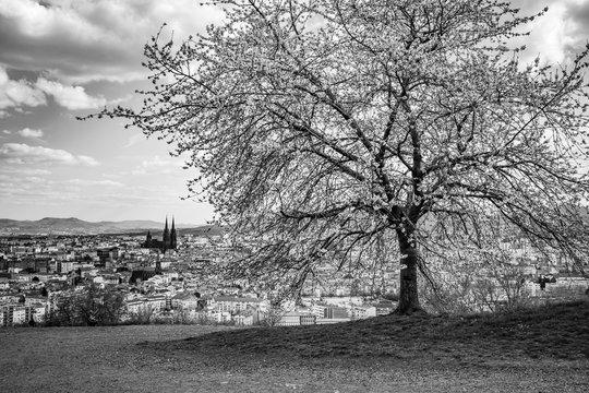Vue sur Clermont-Ferrand depuis le Montjuzet