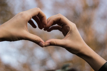 Heart symbol with hands. Nature bokeh background