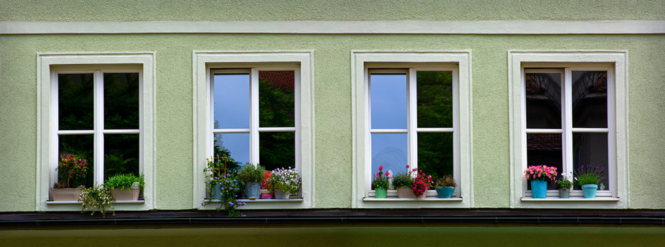 Four windows with flowers in row of a house front