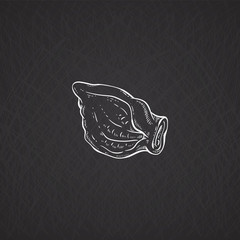 Chalk drawn image of pig ear, vector sketch illustration isolated on black.