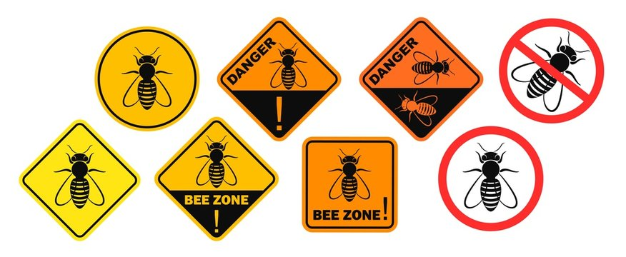 Bee danger sign. Isolated bee on white background