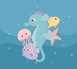 seahorse jellyfish fishes starfish bubbles life cartoon under the sea