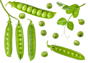 Fototapeta Isolated green peas. Collection of green raw pea pods and beans with an open, closed and fresh leaf on stem. Detail for packaging design obraz