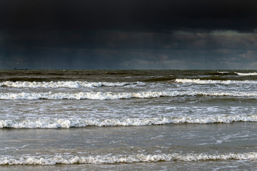 Fototapete - Baltic sea coast in winter day.