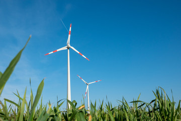 wind turbine stands on a green field in front of a cloudless blue sky