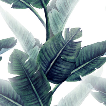 Seamless floral pattern with tropical leaves on light background. Template design for textiles, interior, clothes, wallpaper. Watercolor illustration