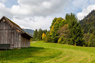 Landscape with wooden cottage, green meadow, multi colored trees, mountain range with forest nearby Menzenschwand, Black Forest, Germany