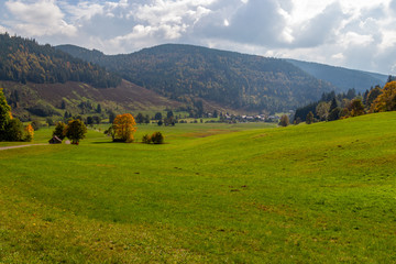 Landscape with green meadow, multi colored trees, mountain range with forest nearby Menzenschwand,  Germany