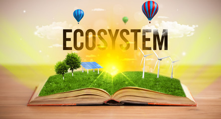 Open book with ECOSYSTEM inscription, renewable energy concept