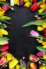 blooming daffodils and easter tulips for spring decoration