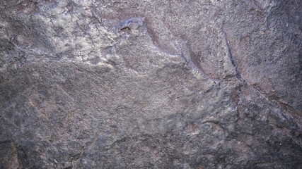 Wall Mural - Black concrete floor background
