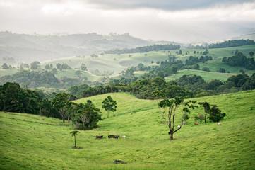 Foto op Plexiglas Pistache View of Landscape