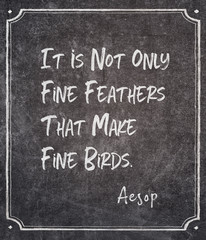 fine feathers Aesop