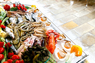 Aluminium Prints Picnic White-headed sea fish, shrimp, crabs, crayfish, mollusks, lobsters are on ice