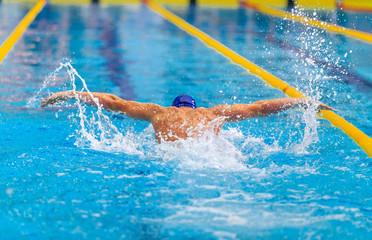butterfly stroke back man swimmer swimming in pool