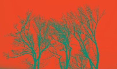 Neon green silhouette trees with red background as sky