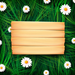 Abstract background wooden board on meadow 001