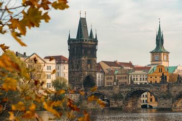 View of the Charles Bridge Through Autumn Leaves in Prague, Czechia