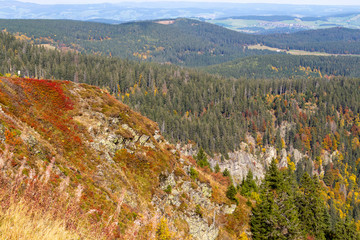 Scenic view at landscape from Feldberg, Black Forest in autumn with multi colored vegetation