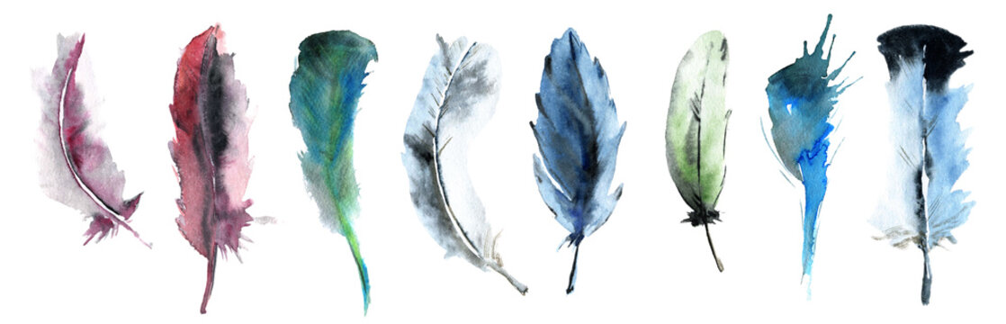 watercolor set of colorful feathers.  indians spiritual beliefs.  lightweight feathers for decor of invitations, cards, paper, scrapbooking