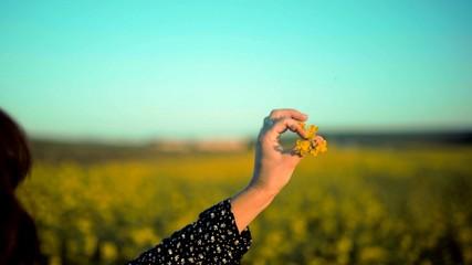 Türaufkleber Reef grun Une main de femme qui tient une fleur