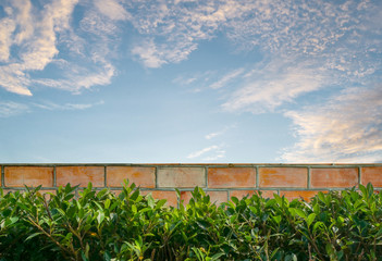 Closeup brick pattern at the brown brick wall of fence with green tree and blue sky with cloud textured background