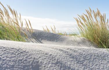Breiter Strand und Dünengras an der Nordsee