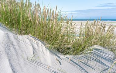 Fototapete - Breiter Strand und Dünengras an der Nordsee
